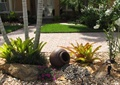 陶瓷罐子,卵石地面,花卉植物,地面铺装,草坪,住宅景观