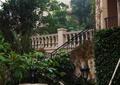 庭院,庭院景观,景观柱,台阶,灯柱