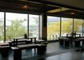 茶桌凳,落地窗,茶室