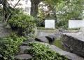 台阶,汀步,矮墙,常绿大乔木
