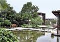 庭院景观,水池,预制块汀步,地面铺装,座椅,廊架,灌木球,常绿乔木