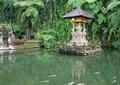 滨水景观,佛龛,蕨类植物,植物墙,垂直绿化