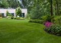 草坪,花卉植物,草本植物,常绿乔木,住宅景观