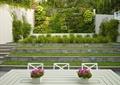 盆景,層疊式草坪,植物墻,垂直綠化,觀賞草